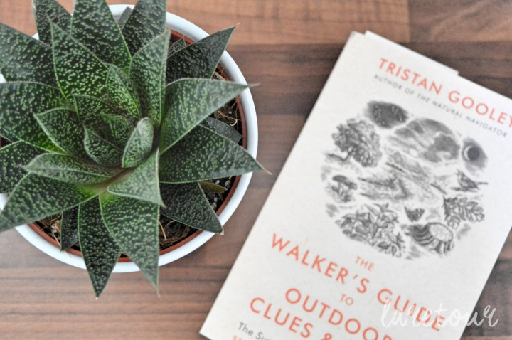 Lazy days with Tristan Gooley's 'The Walker's Guide'
