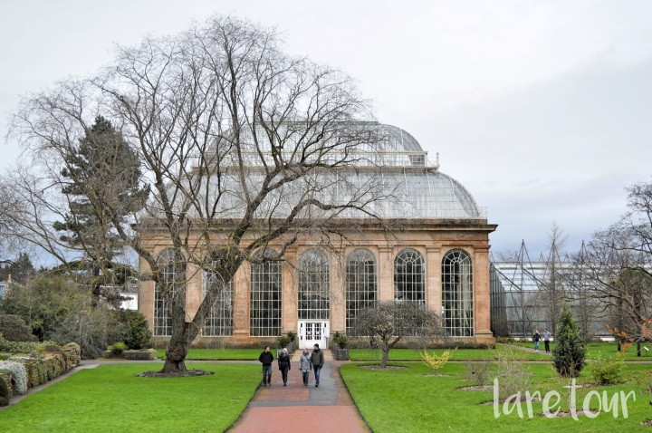 Cloudy Sundays at the Botanics, Edinburgh (much bigger than Glasgow's).