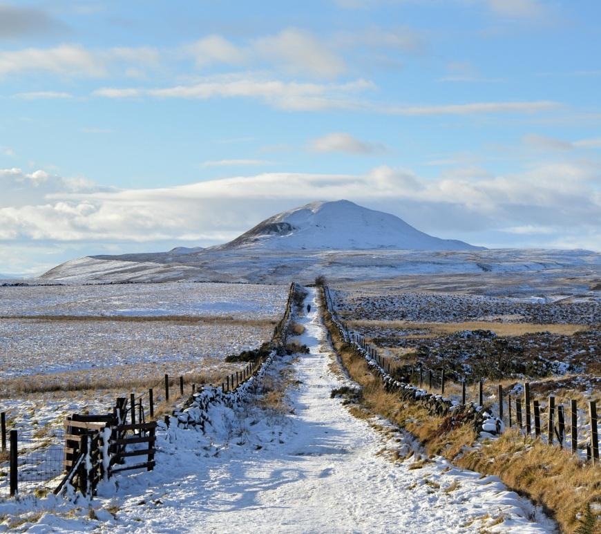Walking in the Lomond Hills, near Falkland, Fife
