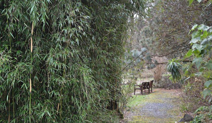 achamore-gardens-002