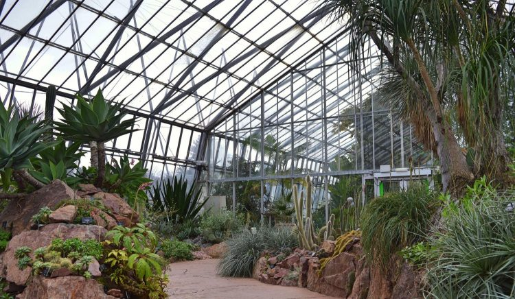 glasshouses-edinburgh-003