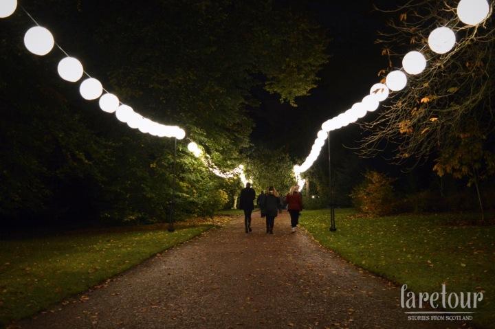 botanic-lights-001
