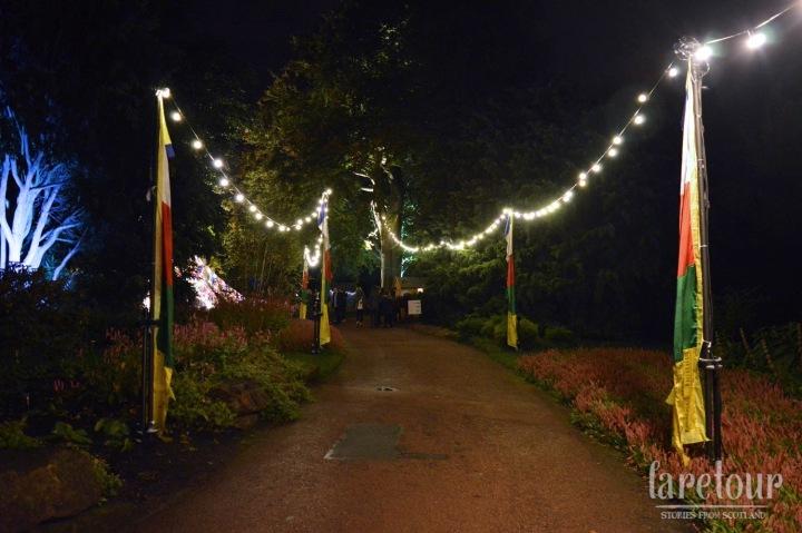 botanic-lights-002