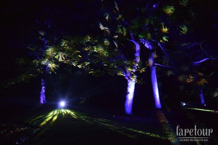 botanic-lights-005