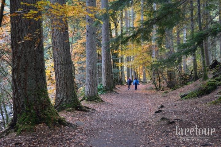 hermitage-dunkeld-autumn-001