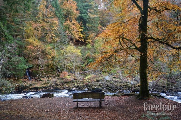 hermitage-dunkeld-autumn-002