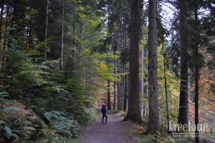 hermitage-dunkeld-autumn-004-1