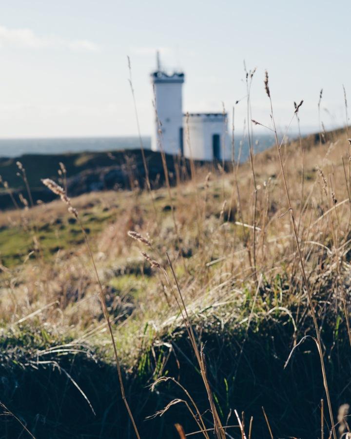 Elie Ness Lighthouse through the grass
