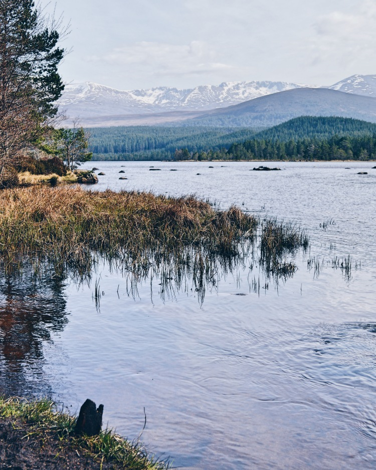 Loch Morlich in the sunshine with snow still on Cairngorm mountains