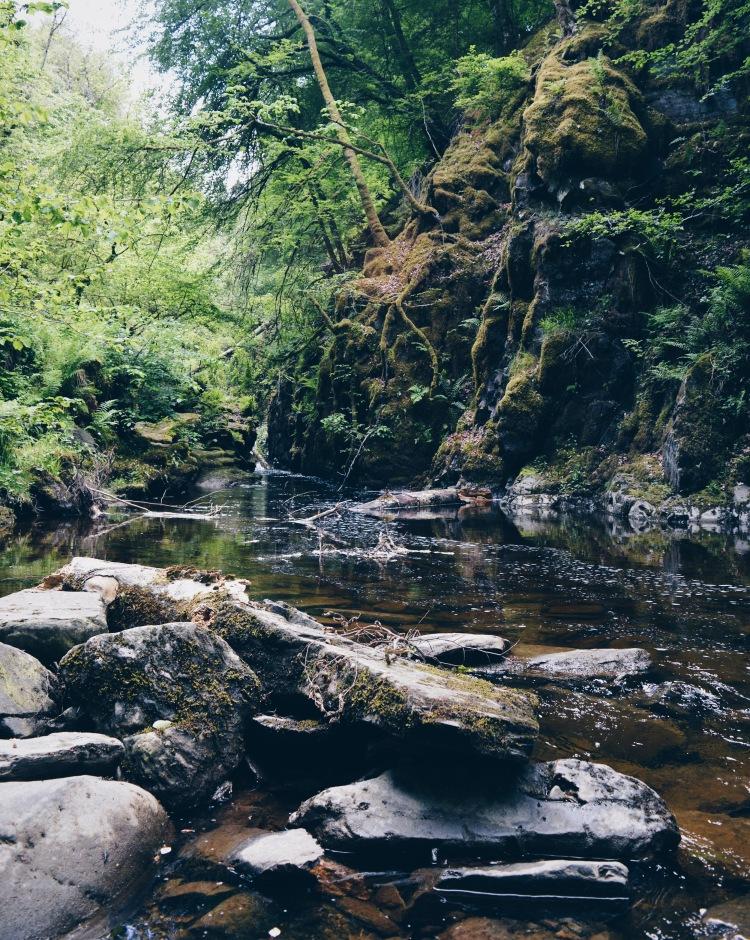 A scene from the walk around the Birks of Aberfeldy