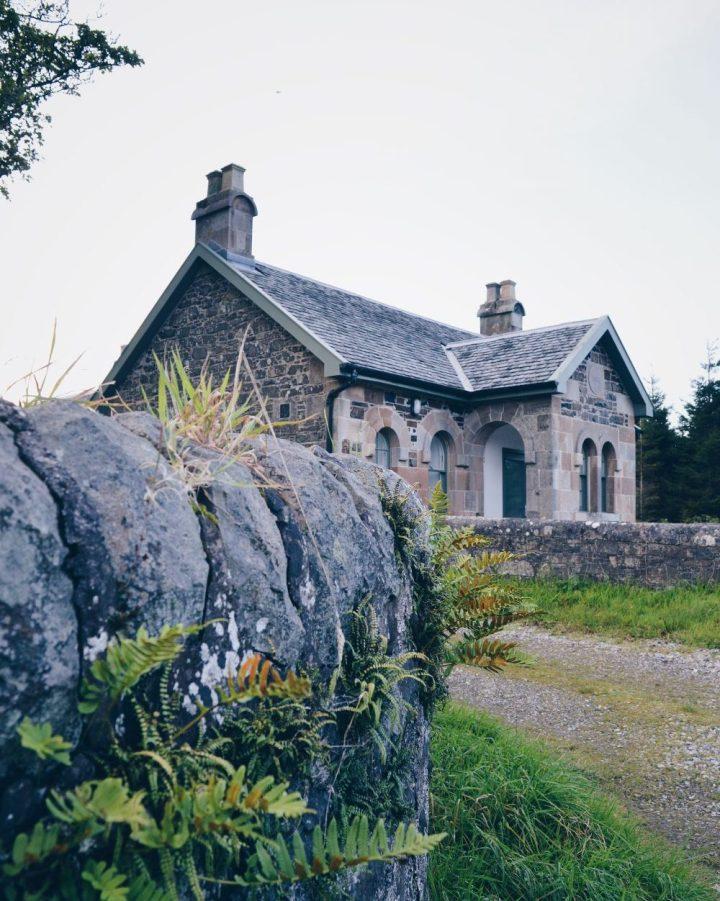 Kettles Cottage framed by ferns