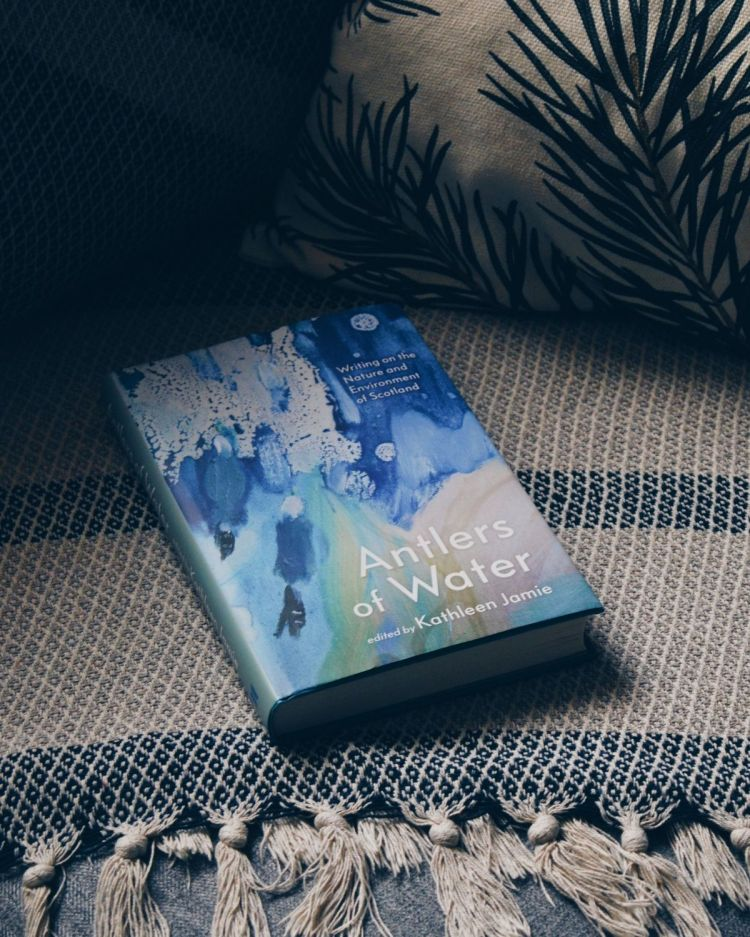 Antlers of Water book