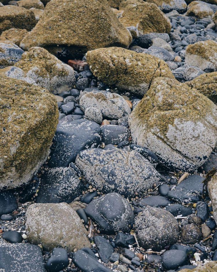 Rocks at a Fife beach